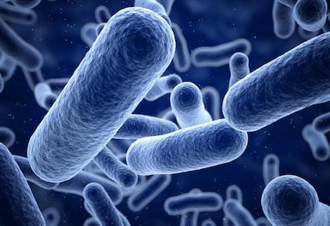 Small Intestinal Bacterial Overgrowth Testing to diagnose SIBO