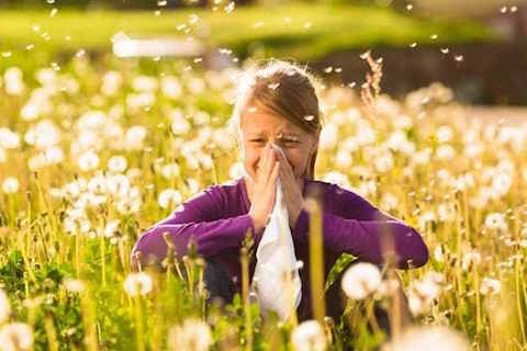 Allergies treatment in Toronto
